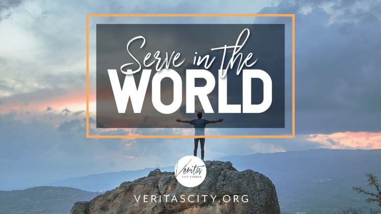 veritas_serve-world_wide-graphic_FA